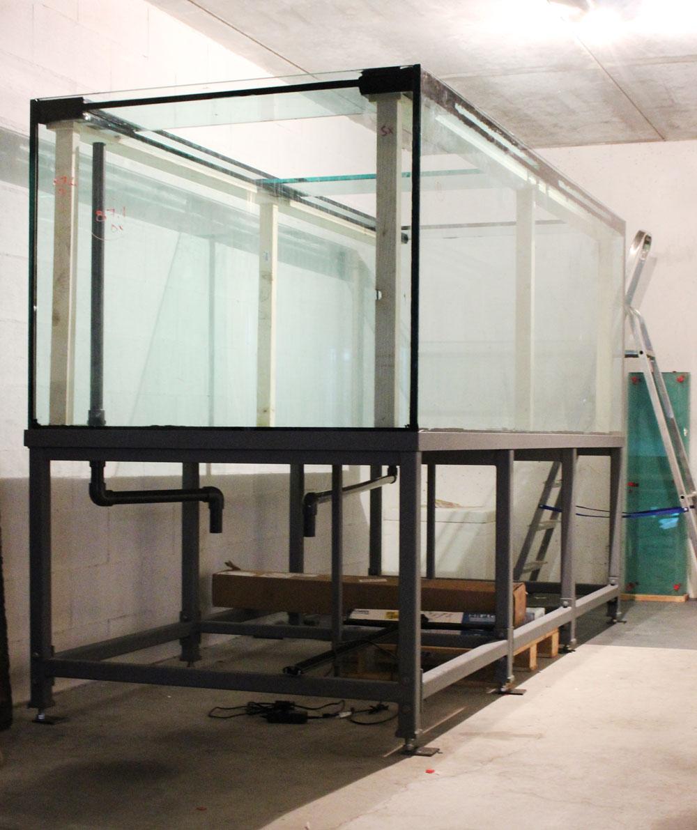 acquari 2 acquario 300x120xh100 costruzione animal 39 s house